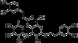 类叶升麻苷 (Verbascoside)