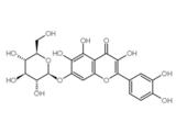 槲皮万寿菊苷(Queccetagitrin)